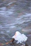 Κλάδος δέντρων που φορά ένα καπέλο πάγου Στοκ φωτογραφία με δικαίωμα ελεύθερης χρήσης