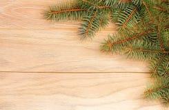 Κλάδος δέντρων στο αγροτικό ξύλινο υπόβαθρο Στοκ εικόνες με δικαίωμα ελεύθερης χρήσης