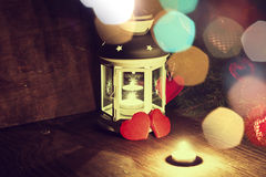 Κλάδος κεριών χειμερινής συλλογής Στοκ εικόνα με δικαίωμα ελεύθερης χρήσης