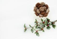 Κλάδος μελοψωμάτων και μούρων της Holly Στοκ εικόνα με δικαίωμα ελεύθερης χρήσης