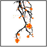 Κλάδος με τα λουλούδια Στοκ Φωτογραφίες