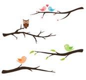 Κλάδος με τα πουλιά και την κουκουβάγια Στοκ εικόνες με δικαίωμα ελεύθερης χρήσης