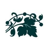 Κλάδος με τα φύλλα Στοκ Φωτογραφία