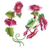 Κλάδος της ανθίζοντας κόκκινης απεικόνισης λουλουδιών Στοκ Εικόνα