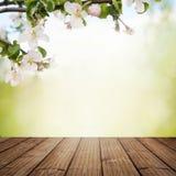 Κλάδος των ανθών της Apple με τις ξύλινες σανίδες Στοκ Φωτογραφίες