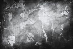 Μαύρα φύλλα Στοκ Εικόνες