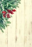 Κλάδος χριστουγεννιάτικων δέντρων με τα κόκκινα μούρα Τρύγος χειμερινών διακοπών Στοκ Φωτογραφίες