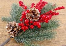 Κλάδος χριστουγεννιάτικων δέντρων με τα στολισμούς στοκ εικόνες με δικαίωμα ελεύθερης χρήσης