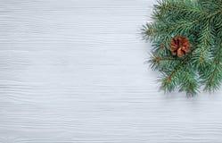Κλάδος χριστουγεννιάτικων δέντρων σε ένα ξύλινο υπόβαθρο Στοκ εικόνες με δικαίωμα ελεύθερης χρήσης