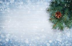 Κλάδος χριστουγεννιάτικων δέντρων στο χιονισμένο ξύλινο υπόβαθρο Στοκ φωτογραφία με δικαίωμα ελεύθερης χρήσης