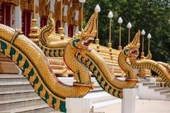 Κλίμακες του αγάλματος Naga στα λείψανα του μπροστινού Βούδα εισόδων Στοκ Εικόνες