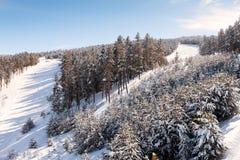 Κλίσεις και δάσος σκι Στοκ φωτογραφία με δικαίωμα ελεύθερης χρήσης