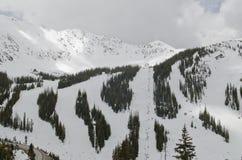 Κλίσεις σκι του Κολοράντο Στοκ Εικόνα