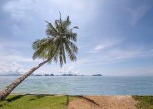 Κλίση δέντρων καρύδων επάνω από τη θάλασσα με το νεφελώδη μπλε ουρανό και υπόβαθρο νησιών στη φωτεινή ηλιόλουστη ημέρα Στοκ Φωτογραφίες