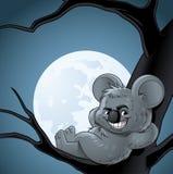 Κλίση koala χαμόγελου ενός δέντρου τη νύχτα Στοκ φωτογραφία με δικαίωμα ελεύθερης χρήσης