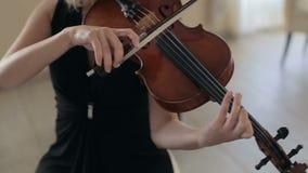 Κλασική μουσική βιολιών μουσικών παίζοντας απόθεμα βίντεο
