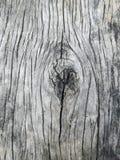 Κλασικό παλαιό ξύλο Στοκ Εικόνες