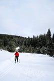 Κλασικό σκανδιναβικό να κάνει σκι στα βουνά Στοκ Εικόνα