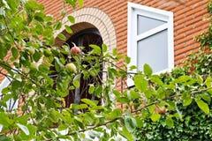 Κλαδάκια δέντρων της Apple μπροστά από το νέο εξοχικό σπίτι Στοκ Φωτογραφία