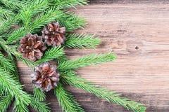 Κλαδίσκος δέντρων του FIR με τρεις κώνους στον παλαιό ξύλινο πίνακα Στοκ φωτογραφία με δικαίωμα ελεύθερης χρήσης