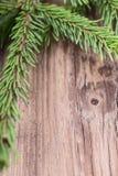 Κλαδίσκος δέντρων του FIR στον ξύλινο πίνακα Στοκ εικόνα με δικαίωμα ελεύθερης χρήσης