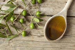 Κλαδί ελιάς και ένα σύνολο κουταλιών του πετρελαίου Στοκ Εικόνες
