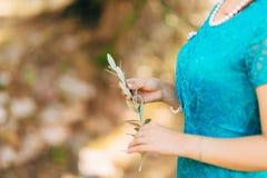 Κλαδί ελιάς στα θηλυκά χέρια Χέρια της νύφης Γάμος σε Mon Στοκ φωτογραφία με δικαίωμα ελεύθερης χρήσης