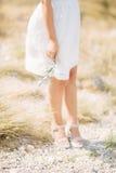 Κλαδί ελιάς στα θηλυκά χέρια Χέρια της νύφης Γάμος σε Mon Στοκ φωτογραφίες με δικαίωμα ελεύθερης χρήσης