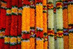 Κλείστε αυξημένος της όμορφης γιρλάντας λουλουδιών στη Μαλαισία στοκ φωτογραφίες