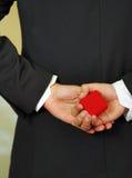Κλείστε αυξημένος του κιβωτίου δαχτυλιδιών εκμετάλλευσης ατόμων στοκ εικόνα