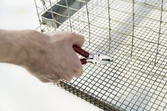 Κλείστε αυξημένος των χεριών με πιό plier Στοκ εικόνες με δικαίωμα ελεύθερης χρήσης