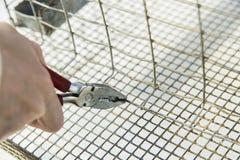 Κλείστε αυξημένος των χεριών με πιό plier Στοκ Φωτογραφίες