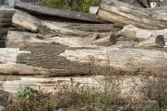 Κλείστε επάνω ενός σωρού των καρυκευμένων κούτσουρων Στοκ εικόνα με δικαίωμα ελεύθερης χρήσης