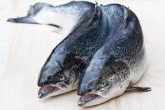 Κλείστε επάνω ολόκληρα τα ακατέργαστα salmons στο ξύλινο υπόβαθρο Στοκ Εικόνες