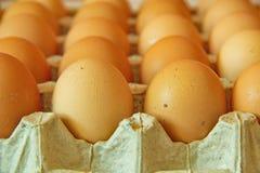 Κλείστε επάνω πολλών αυγών σε μια σειρά, άποψη προοπτικής, Στοκ Εικόνες