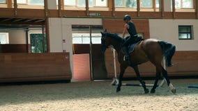 Κλείστε επάνω στο άλογο οδήγησης νέων κοριτσιών στη μεγάλη αίθουσα φιλμ μικρού μήκους