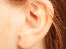 Κλείστε επάνω στο θηλυκό αυτί στοκ εικόνα με δικαίωμα ελεύθερης χρήσης