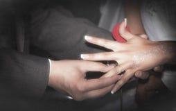 Κλείστε επάνω τα χέρια της νύφης και ο νεόνυμφος που βάζει σε έναν γάμο χτυπά Στοκ Εικόνες