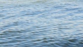 Κλείστε επάνω την άποψη της κυματιστής επιφάνειας νερού φιλμ μικρού μήκους