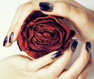 Κλείστε επάνω την εικόνα των καρφιών μανικιούρ με το ξηρό λουλούδι κόκκινο αυξήθηκε, αφυδατωμένος μέχρι το χειμώνα Στοκ Εικόνα