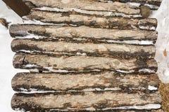 Κλείστε επάνω την ξύλινη γέφυρα που καλύπτεται με το χιόνι Στοκ Εικόνα