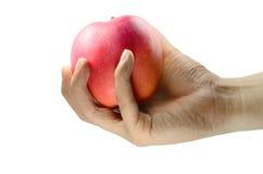 Κλείστε επάνω της αρσενικής εκμετάλλευσης η κόκκινη Apple χεριών Στοκ εικόνα με δικαίωμα ελεύθερης χρήσης