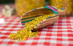 Κλείστε επάνω της γύρης μελισσών Στοκ Εικόνες