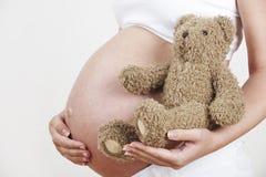 Κλείστε επάνω της εκμετάλλευσης Teddy εγκύων γυναικών αντέχει Στοκ φωτογραφία με δικαίωμα ελεύθερης χρήσης