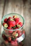 Κλείστε επάνω της οργανικής φράουλας στον πράσινο κασσίτερο Στοκ εικόνες με δικαίωμα ελεύθερης χρήσης