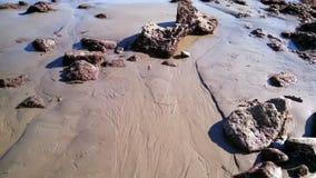 Κλείστε επάνω της δύσκολης παραλίας Καλιφόρνιας Στοκ Φωτογραφίες