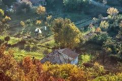 Κλείστε επάνω τη φωτογραφία της αγροτικής σκηνής, αναδρομικό φίλτρο φωτογραφιών Στοκ εικόνες με δικαίωμα ελεύθερης χρήσης