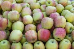 Κλείστε επάνω τη φωτογραφία του μεγάλου σωρού των μικτών κόκκινων πράσινων μήλων Στοκ εικόνες με δικαίωμα ελεύθερης χρήσης