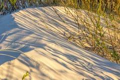 Κλείστε επάνω του αμμόλοφου άμμου το βράδυ στοκ εικόνα