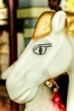 Κλείστε επάνω του αλόγου σε ένα ιπποδρόμιο Στοκ φωτογραφίες με δικαίωμα ελεύθερης χρήσης